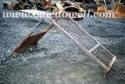 Canopy - John Deere 350C Crawler Loader